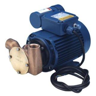 Impellerpumpe Universal  230 Volt 20 Liter / Minute Nitril